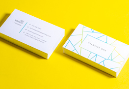 Soft Touch Business Cards G