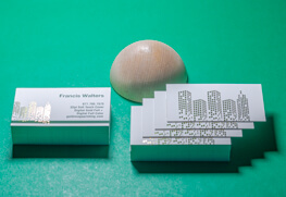 Soft Touch Business Cards F